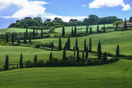 val dorcia: Val Dorcia landscape in spring. Tuscany, Italy