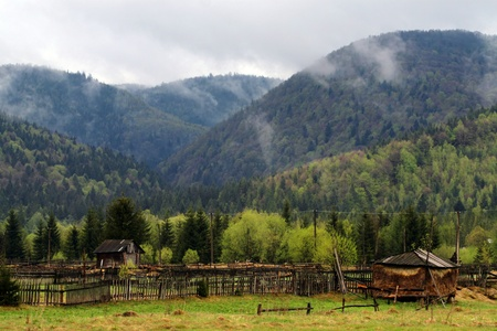 Mountain countryside landscape (Carpathian Mountains, Ukraine) photo