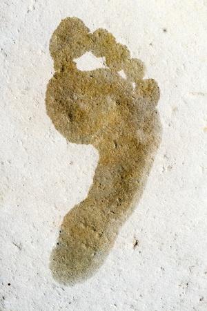 Wet footprint on a stone photo