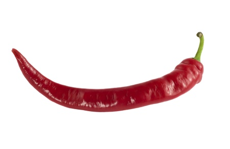 Red chili pepper isolated on a white background photo