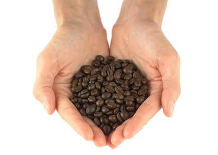 Hands holding a scoop of coffee beans  photo