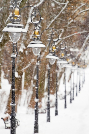 Lanterns in the winter park covered with snow photo