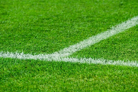 White line on a soccer field grass photo