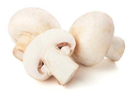 mushroom�: Champignon mushrooms on white backround