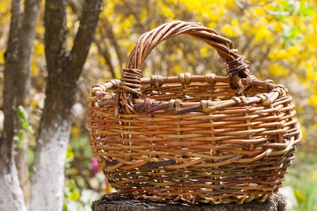 Old wicker basket in a garden photo