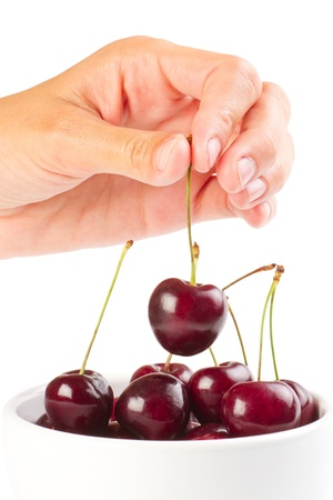 Red ripe cherries in the hand over white background photo