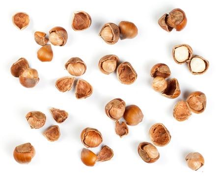 filbert nut: Filbert nut isolated on white background
