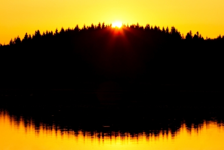 Red sunset and trees silhouette over the forest lake photo