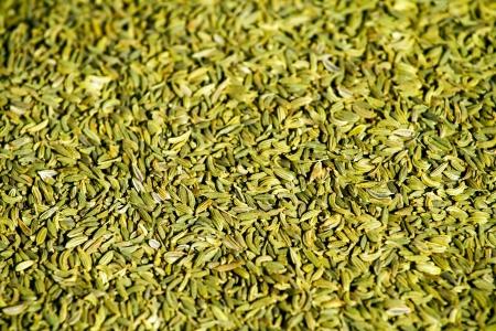 foeniculum vulgare: Close up background of fennel seeds  foeniculum vulgare