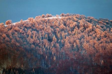 Sunrise in Carpathian Mountains, Ukraine photo