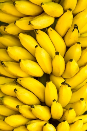 Bunch of ripe bananas background photo