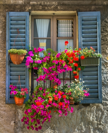 flower boxes: Vintage window with open wooden shutters and fresh flowers