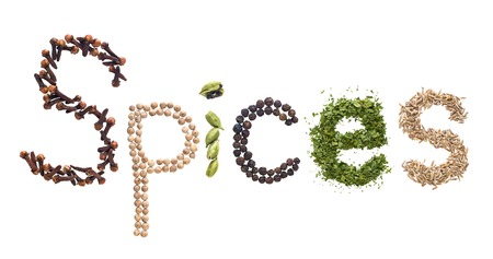 seeds of various: The spices word made of various herbs and seeds isolated on white background