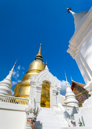 The golden pagoda at Wat Suan Dok temple in Chiang Mai, Thailand photo