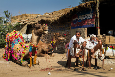 PUSHKAR, INDIA - DECEMBER 4: Two Rajasthani mans with camel are waiting clients for camel riding after Pushkar Camel Fair on December 4, 2012 in Pushkar, Rajasthan, India.