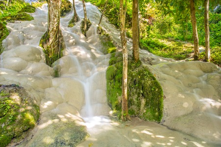 Namtok Bua Tong (Sticky waterfall) in Northern Thailand photo