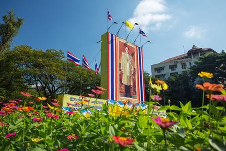 ix portrait: CHIANG MAI, THAILAND - DECEMBER 4:The large portrait of Thai King Bhumibol Adulyadej on December 4, 2014 in Chiang Mai, Thailand