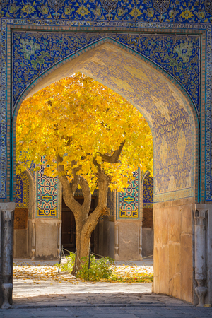 esfahan: Beautiful tree with yellow leaves framed in arch of Shah Mosque in Esfahan, Iran Stock Photo