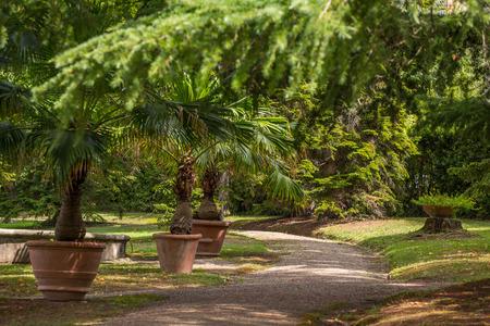 Beautiful park in Montecatini Terme Spa, Italy.