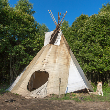 solitary: A single, solitary teepee in a forest. Tepees were traditional housing for Native Americans in Great Plains and other Western states. Stock Photo
