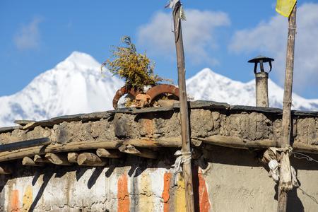 in low spirits: Ram skull on the house roof in Lower Mustang region in Nepal