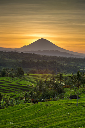Jatiluwih Rice Terraces and Agung volcano at sunrise, Bali, Indonesia Stock Photo