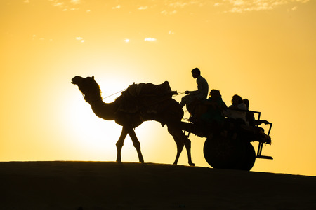thar: Rajasthan travel background - camel silhouette with the wagon in dunes of Thar desert on sunset. Jaisalmer, Rajasthan, India