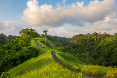 Sunset sky over the famous Campuhan Ridge Walk in Ubud, Bali, Indonesia