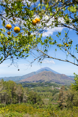 crater lake: Sunny day view of the caldera of Batur volcano in Bali, Indonesia.