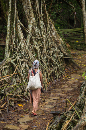 Meghalaya, India - May 15, 2017: Khasi woman from the Riwai village crossing one of the famous living roots bridge in Meghalaya state, India. This bridge is formed by training tree roots over years to knit together.