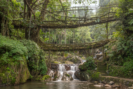 Famous Double Decker living roots bridge near Nongriat village, Cherrapunjee, Meghalaya, India. This bridge is formed by training tree roots over years to knit together. Stock Photo