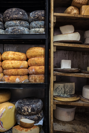 Different kinds of goat cheese on shelves in cellar in a cheese farm in Israel
