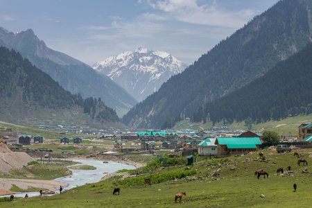 Beautiful mountain landscape around Sonamarg village, Jammu and Kashmir state, India