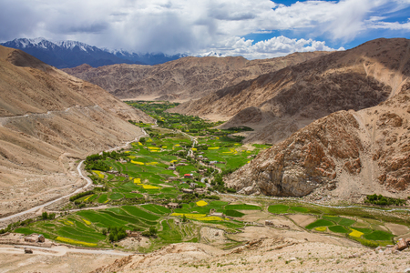 Beautiful landcape of the green valley in Leh district at summer, Ladakh
