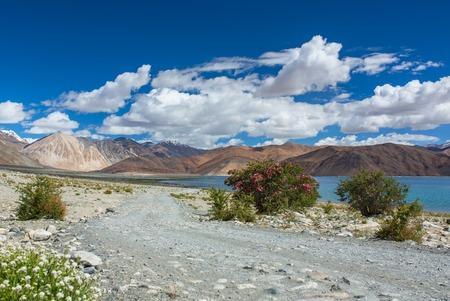 Beautiful landscape of Pangong Tso Lake in Ladakh Stock Photo