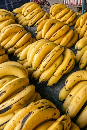 Bunches of ripe bananas on thai market stall