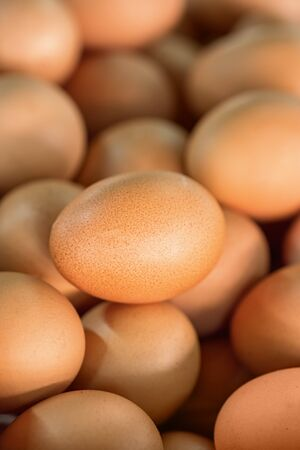 Many brown eggs in the shop closeup