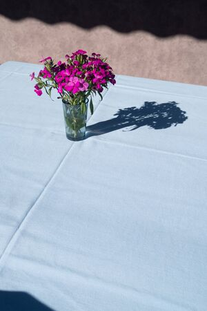 Empty table with flowers in vase with blue tablecloth. Outdoor cafe concept 版權商用圖片