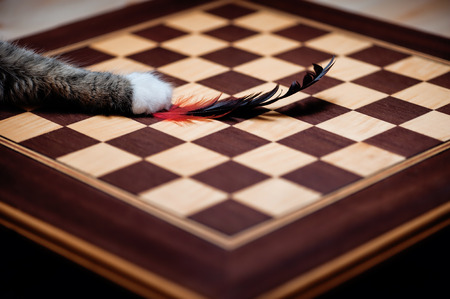 earth moving: Hunter chessboard
