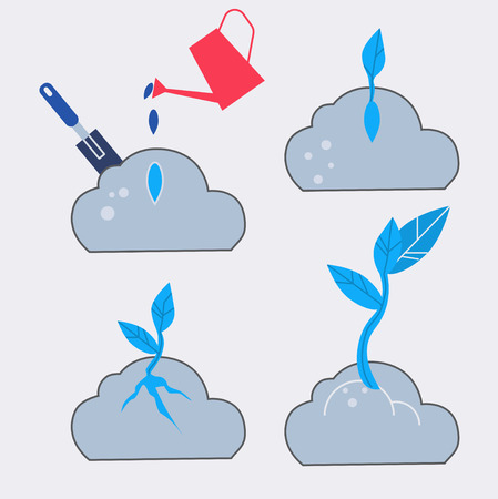 Four step of plant grawing. Flat design