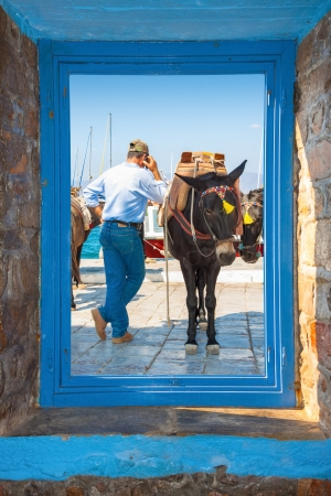 Window frame  view with donkey driver talking by phone  in Santorini island Greece photo