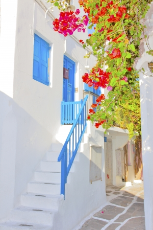 Greece, bougainvillea by street, view in Mykonos capitol