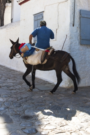 Traditional way of transportation riding donkeys Santorini island Greece photo