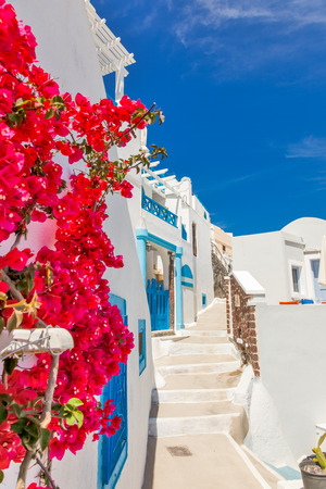 Greece Santorini island in Cyclades, traditional sights of colorful and white washed houses with wooden frames and flowers