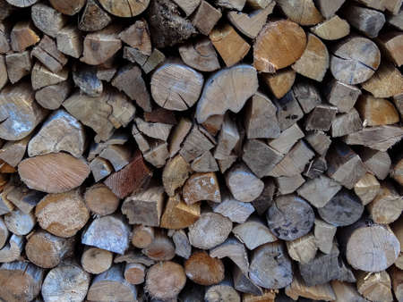 Closeup of a wood pile Stock Photo - 12964878