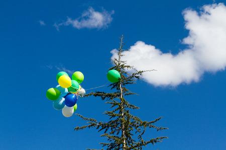 many bright baloons in the blue sky Stock Photo - 66567170