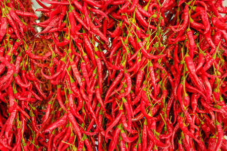 peppers drying outside as traditional Stock Photo - 157562473
