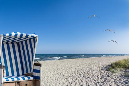 strand, meeuwen en een strandstoel