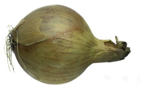 edible but not eatable vegetable with a strong, pungent smell and taste, used in cooking Stock Photo - 2247753