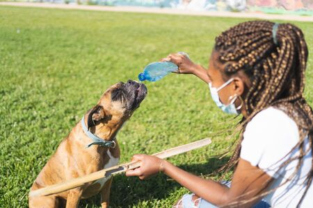 African woman with a mask on her face giving a plastic bottle to a boxer dog on the grass while is holding a wooden stick